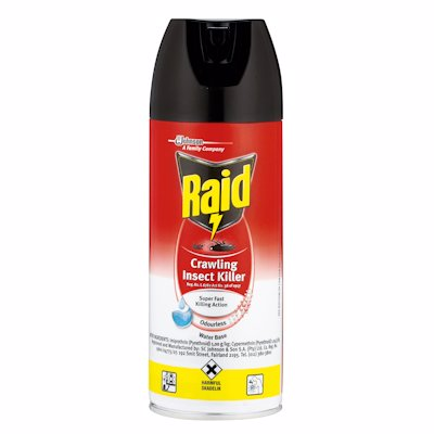 RAID CRAWLING INSECT KILLER ODOURLESS 300ML